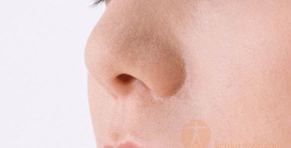 鼻炎 レンコンエキス