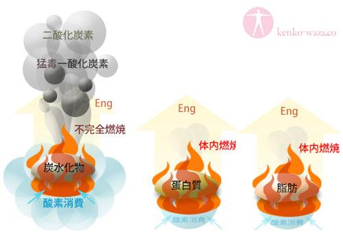 炭水化物 タンパク質 脂肪 燃焼