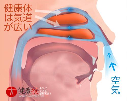 鼻腔広げるイビキ鼻炎解消運動4-健康技