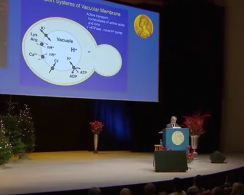 【簡単!】ノーベル賞理論が導く驚天動地の革命的ダイエット理論!こういう事だったのか!とにかく驚きです!健康技3