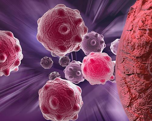 【革命!】肝臓肥大、肝臓充血を防ぐ!肝臓の硬化も防ぎ顔色も変化!肝臓諸病予防に!