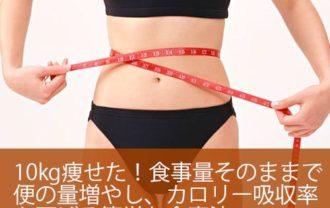10kg痩せた!食事量そのままで便の量増やし、カロリー吸収率を下げる簡単な食事法 健康技