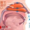 鼻腔広げるイビキ鼻炎解消運動6-健康技