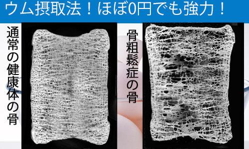 【骨粗鬆症予防!】究極のカルシュウム摂取法!ほぼ0円でも強力!2健康技