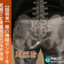 【超簡単】腸の神経センサーを覚醒させ栄養吸収力UPや便秘ガス溜まり解消へ!健康技1